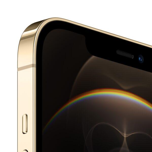 iPhone_12_Pro_Max_Gold_PDP_Image_Position-3__en-US